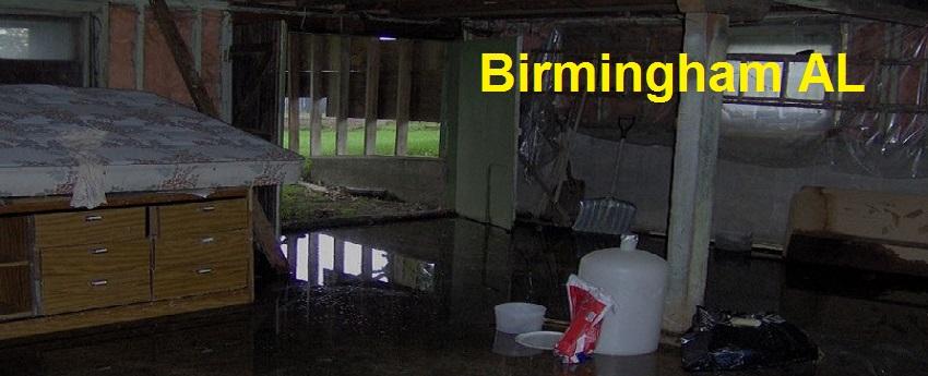 45789 tags birmingham-al